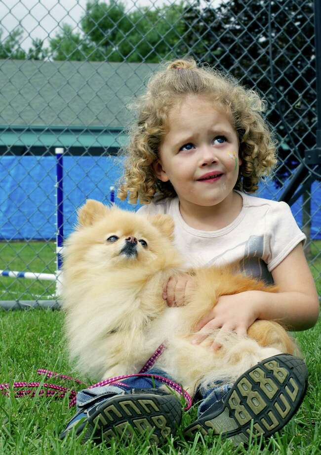 Morgan Kotach, 3, of Bethel bonds her Pomeranian, Nala, 9,  during the New Milford Animal Welfare Society's annual Dog Days on Sept..21, 2013. Photo: Trish Haldin / The News-Times Freelance