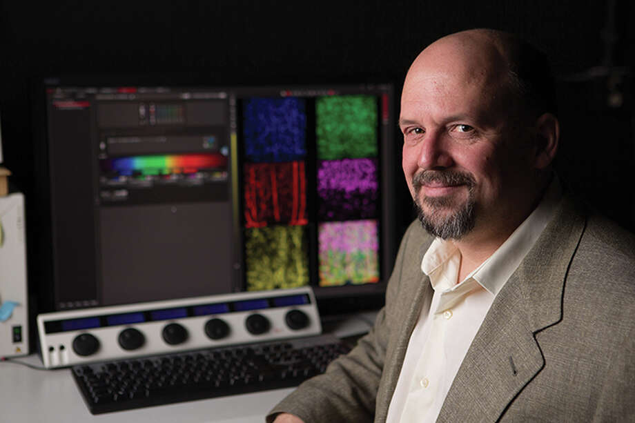 Gregg Roman, Ph.D., associate professor of biology and biochemistry at the University of Houston, studies the brains of fruit flies which ultimately could yield better treatments to improve memory in humans. Photo: University Of Houston
