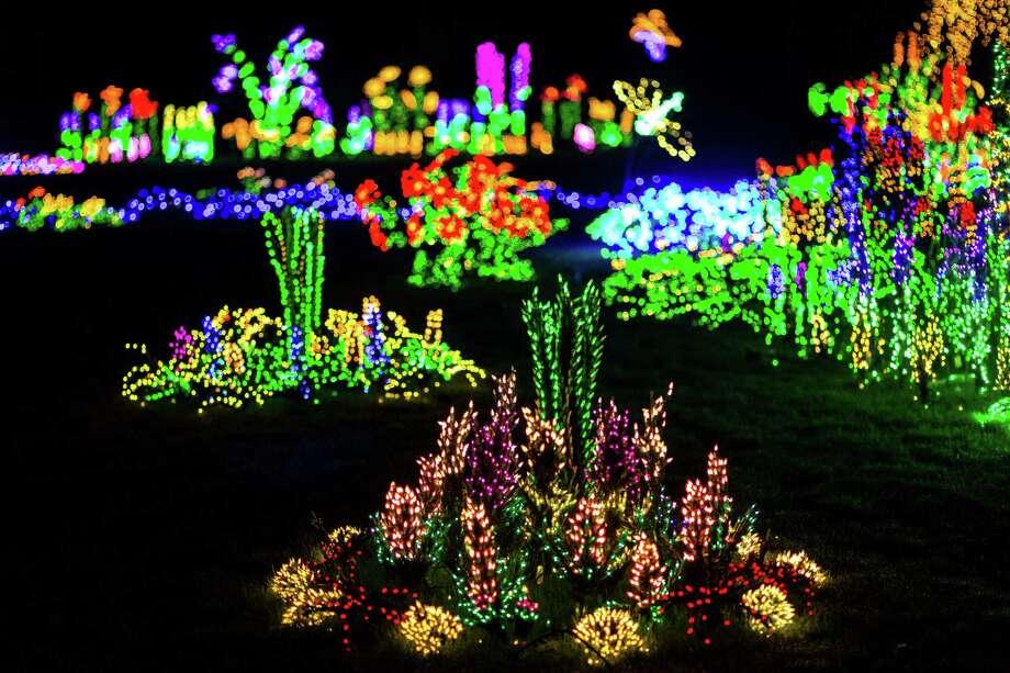 Garden D Lights At The Bellevue Botanical Garden