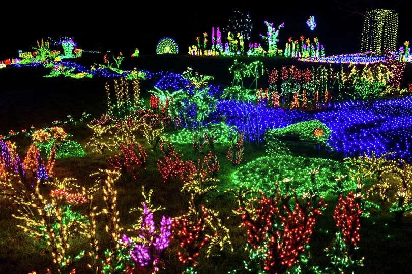 Over 500 000 lights transformed the bellevue botanical garden into photo for Bellevue botanical garden lights