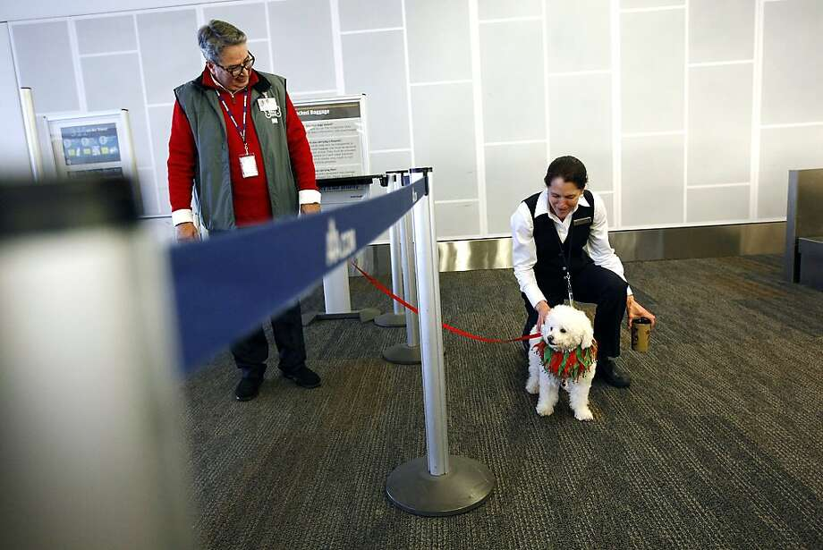 Flying Delta You May Have To Leave Your Emotional Support