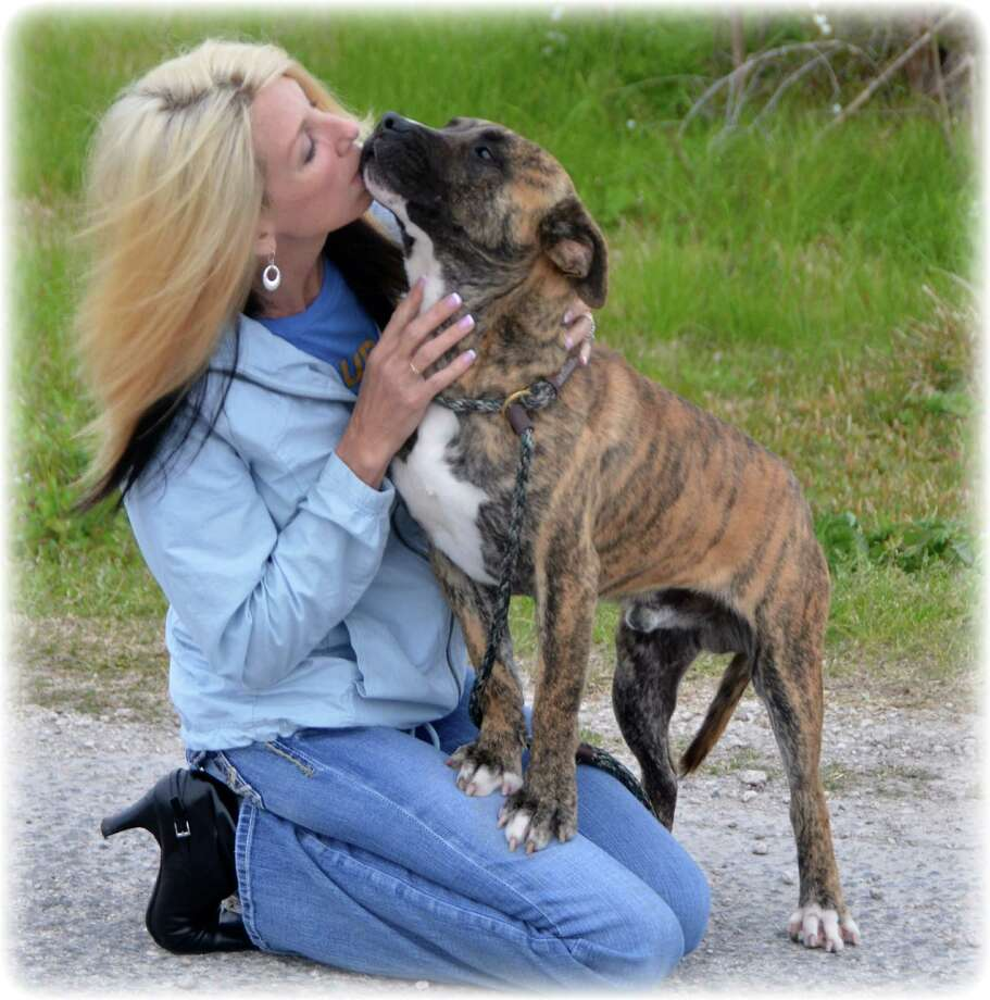 Kym Ann Dabideen-Denton co-founded a nonprofit organization to rescue abused canines.