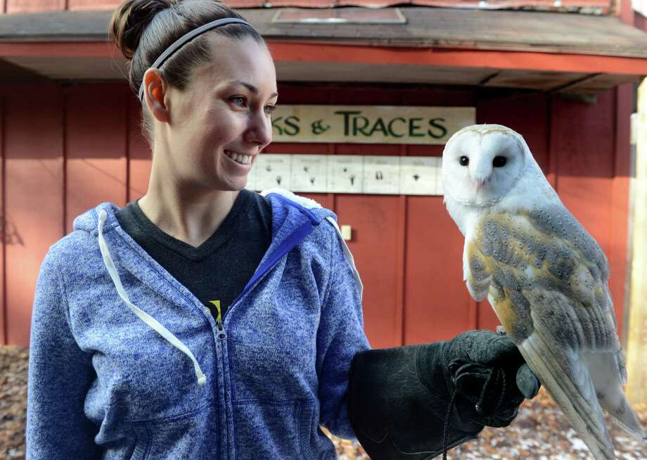 Animal care supervisor Beth Ferencz, of Trumbull, spends some time with Milton, a European barn owl, Friday, Dec. 27, 2013 at the Connecticut Audubon Society in Fairfield, Conn. Ferencz in new to the center and spends as much time with Milton as she can so the two can work on getting to know each other. Photo: Autumn Driscoll / Connecticut Post