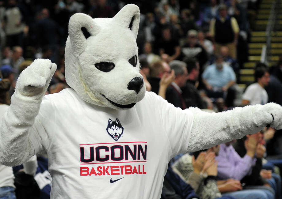 UConn mascott Jason, during men's basketball action against Eastern Washington at the Webster Bank Arena in downtown Bridgeport, Conn. on Saturday December 28, 2013. This is the first time the men's basketball team is playing in Bridgeport. Photo: Christian Abraham / Connecticut Post