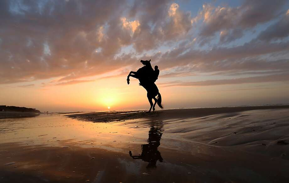 A horse riddenby a Palestinian rears up on the beach in in Gaza City. Photo: Hatem Moussa, Associated Press
