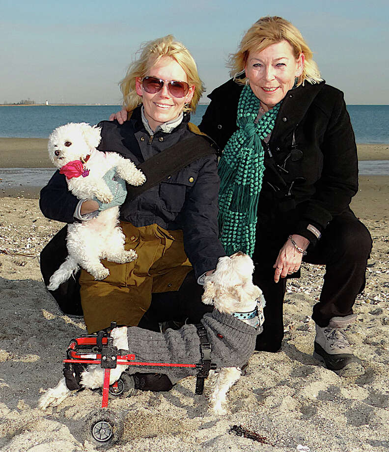 Jill Lawson of Fairfield and her mother Inge Kruuse, from Denmark, spent time together Fridat with Jill's dogs Bella and Albert, at Penfield Beach. Photo: Mike Lauterborn / Fairfield Citizen contributed