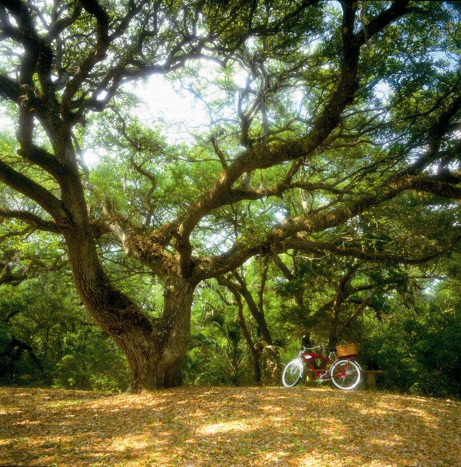 Bike tours of Fort Clinch State park are offered by Kayak Amelia.Photo courtesy of Amelia Island / Amelia Island