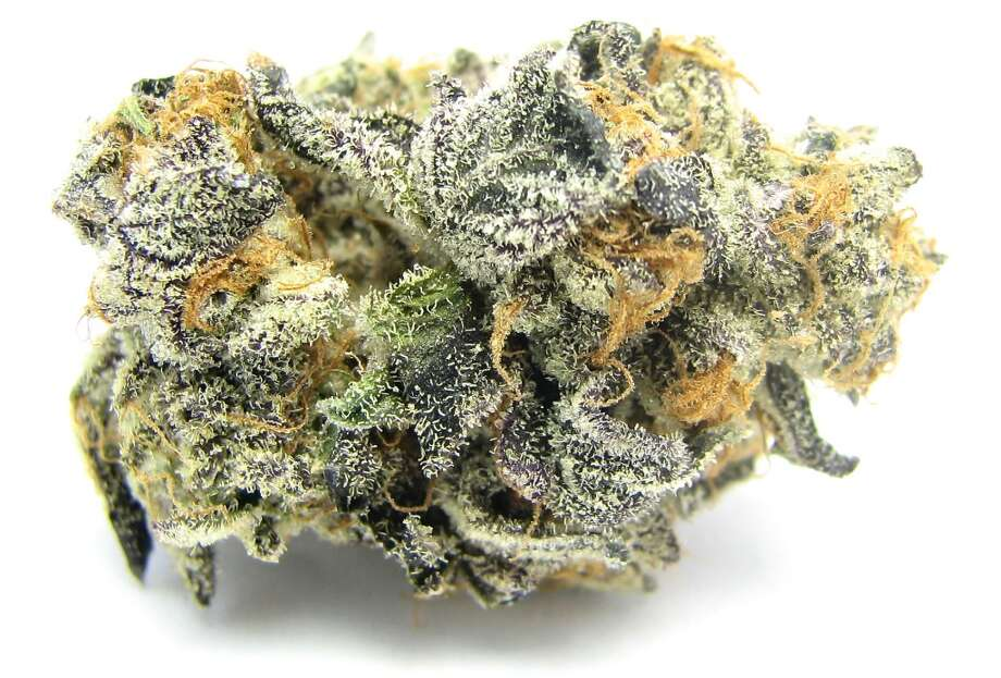 """1) Girl Scout Cookies Thus concludes the Year of the Cookies. The San Francisco-native, indica-dominant strain took four Cannabis Cups in less than a year, and dominated dispensary shelves. A mix of Durban, Florida Kush, and a secret strain dubbed """"F1"""" - GSC has people tasting the skunk of OG, the dark berry of GDP, and the mint of Durban. Scrumptious."""