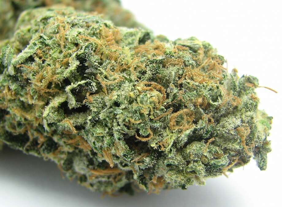 2) Sunset Sherbet Girl Scout Cookies developer Jigga and company have moved from GSC into new offshoots like this hit Sunset Sherbet found around the Bay. Deeply stony, Sunset Sherbet takes the complex baked good smell of Cookies and makes it sweeter and creamier. Not for daytime use.