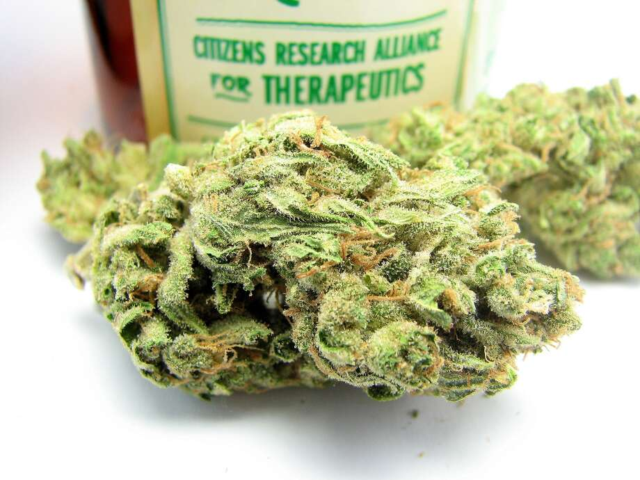 4) Durban Cannasseurs rediscovered their love of South African Sativa Durban - an elemental part of Cookies and an energetic, appetite-suppressing strain in its own right. Photo: Picasa