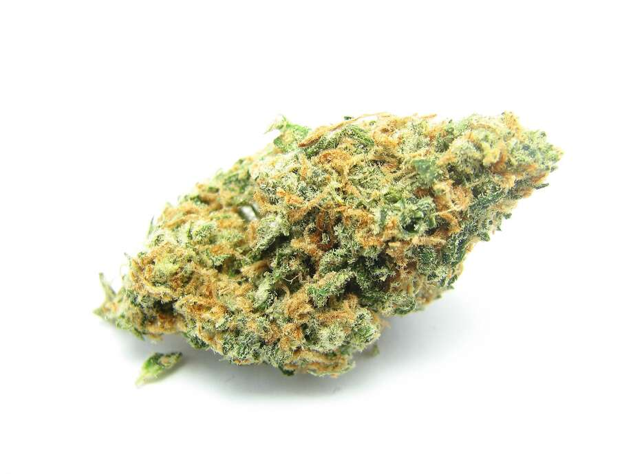 5) Dream Queen Fans of Blue Dream branched out into this cross with Space Queen - Dream Queen. The tropical fruit blast and middle of the road effects made it great for day or nighttime use. Photo: Picasa
