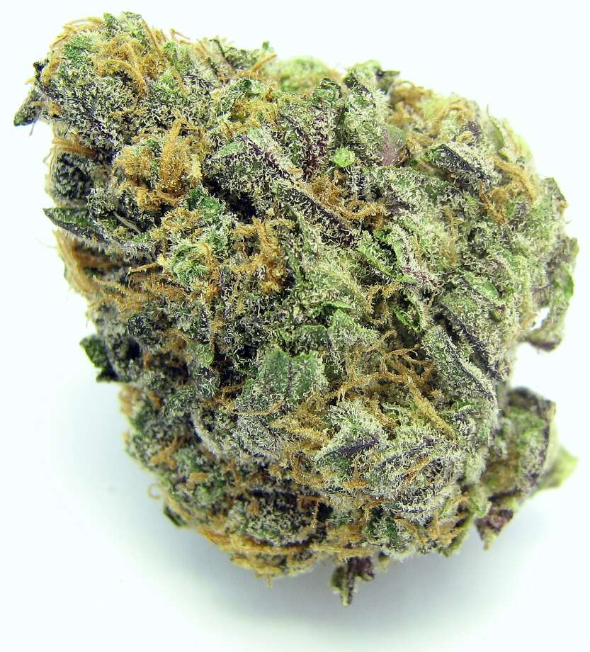7) Grand Daddy Purple There's never a bad year for purples. Grand Daddy Purple held onto a spot in the top echelon with pain-busting analgesic effects, insomnia-bashing couch-lock, and that grape drank flava heads cannot get enough of. Everything purple! Photo: Picasa