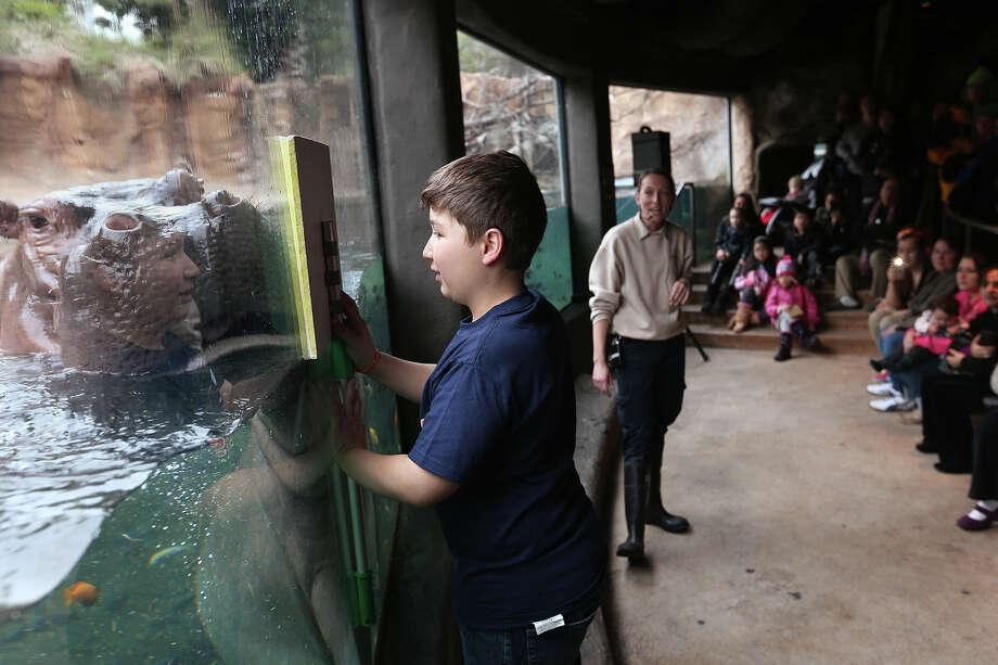Today could be the perfect day to take the kiddos to the San Antonio Zoo, which is open all year including Christmas. Photo: JERRY LARA, San Antonio Express-News / © 2013 San Antonio Express-News