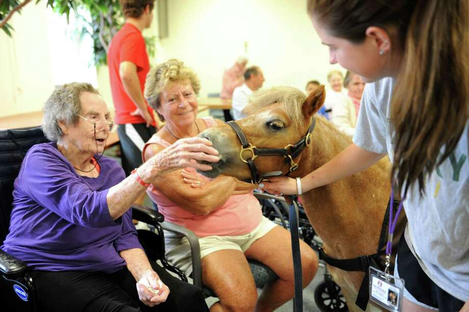 Mary Lonergan, a resident, left, and her daughter, Cathleen, enjoy Taylor Lampert 17, and her pony named Rio at the Nathaniell Witherell in Greenwich, Conn., Tuesday, August 27, 2013. Lampert is going back soon to Ethel Walker School, in Simsbury, Conn., and Rio goes with her. Photo: Helen Neafsey / Greenwich Time