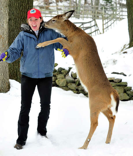 Jennifer Anfinsen gets a kiss from Cooper, a pet deer who lives at The Ridge Equestrien Center in Ne