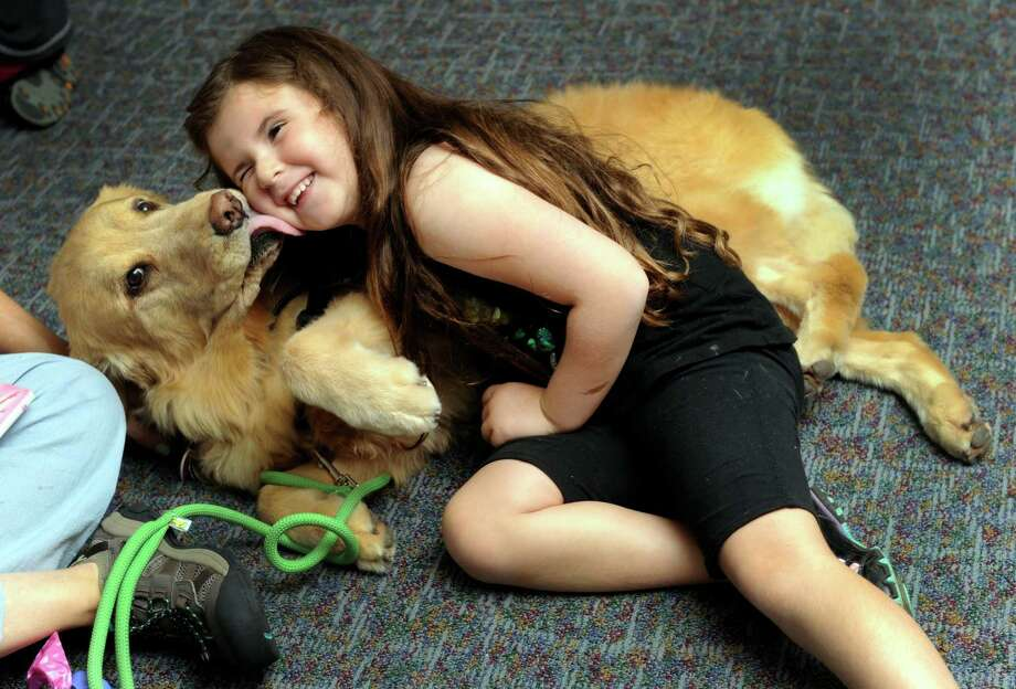 Emily Godbout, 5, of Sandy Hook, gets some loving from Gracie, a golden retriever therapy dog during a Camp Bow Wow presentation at the C.H.Booth Library Tuesday, Aug. 13, 2013. Camp Bow Wow brought their therapy dogs to Newtown this week working with Sandy Hook Promise. Photo: Carol Kaliff / The News-Times