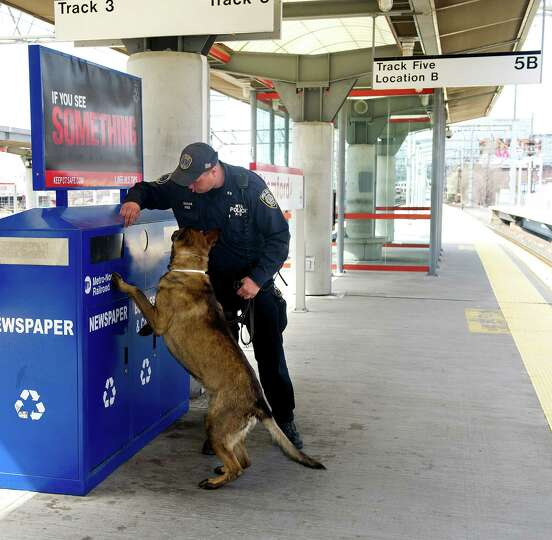 MTA Police Officer Mike Sachar and his dog, Shenko, clear a platform at the Stamford Train Station a