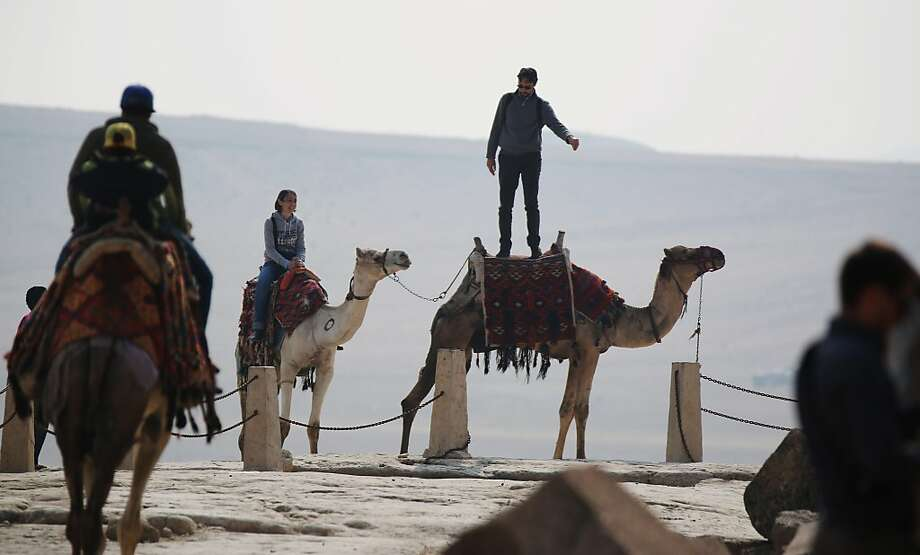 Is this how you ride them? The camels that tourists rent for photos by the pyramids at Giza near Cairo are exceedingly 