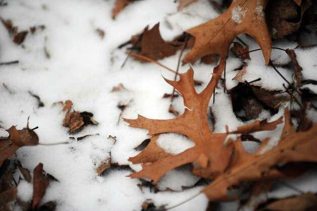 Winter weather around Connecticut Thursday, Jan. 2, 2014. Photo: Autumn Driscoll / Connecticut Post