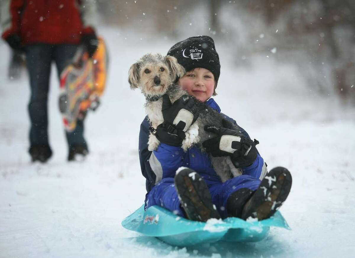 Max the dog looks on uncertainly as Anders Hebeler, 8, takes him for a ride down the sled hill at Twin Brooks Park in Trumbull.