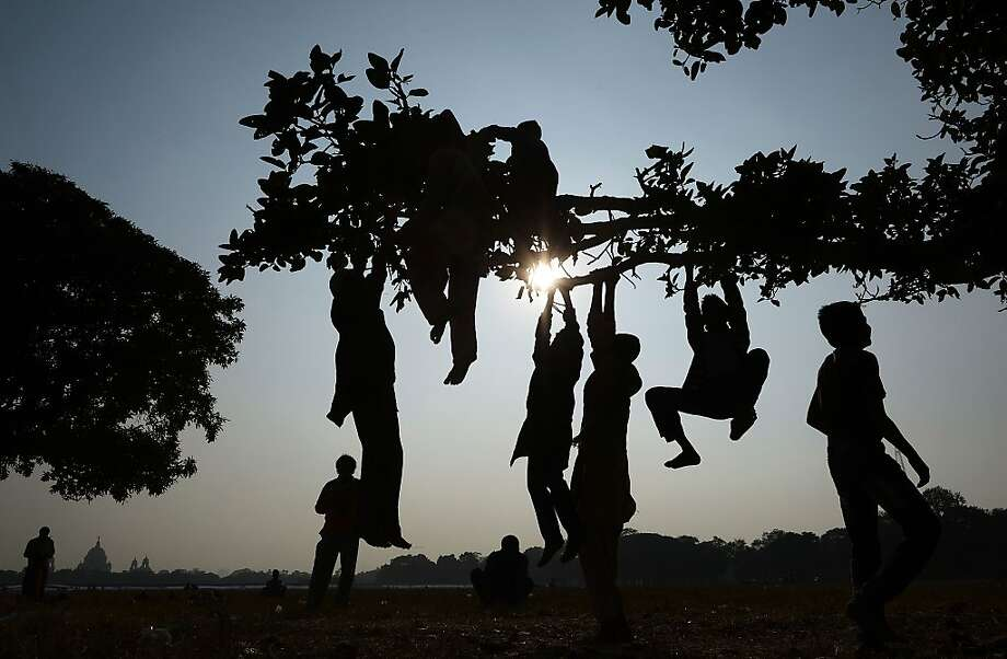 TOPSHOTS Indian children swing from a tree in the Maidan area of Kolkata on January 2, 2014. The Maidan (or open field) is the largest urban park in Kolkata and is known as the lungs of the city', stretching over more than a thousand acres. AFP PHOTO/Dibyangshu SARKARDIBYANGSHU SARKAR/AFP/Getty Images Photo: Dibyangshu Sarkar, AFP/Getty Images