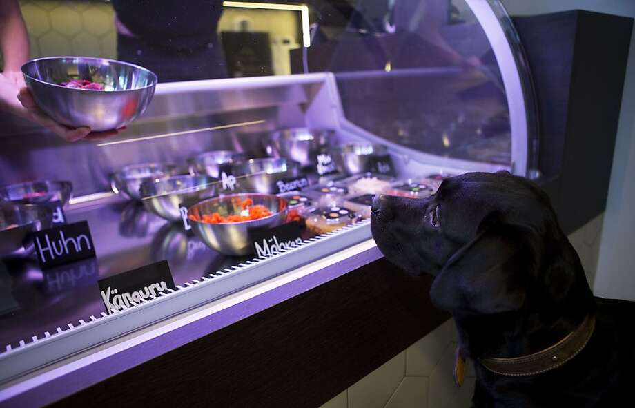 A dog named Lilly looks on as store manager Katharina Warkalla mixes a meal for her in Berlin's Gruenewald district on January 2, 2014. The shop mixes fresh meats, vegetables and other ingredients to prepare meals for the animals which can be eaten on site or taken away. TOPSHOTS/AFP PHOTO / DAVID GANNONDAVID GANNON/AFP/Getty Images Photo: David Gannon, AFP/Getty Images