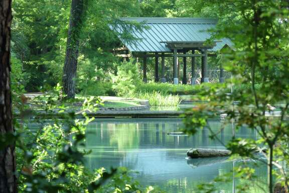 Storey Lake is a peaceful wooded setting at Mercer Arboretum and Botanic Gardens, which begins its 40th anniversary celebration 11 a.m. Wednesday.