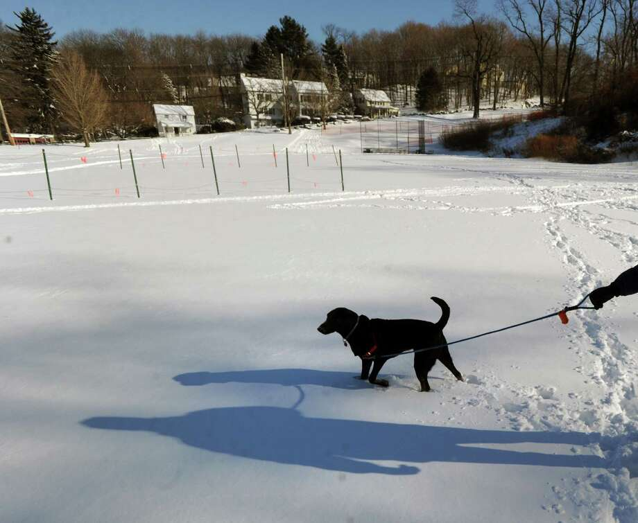 Marc Tauber of Greenwich and his dog, Murphy, walk in the snow at the Western Greeenwich Civic Center, Greenwich, Conn., Friday afternnon, Jan. 3, 2014, during the aftermath of the snow storm that hit the area. Photo: Bob Luckey / Greenwich Time