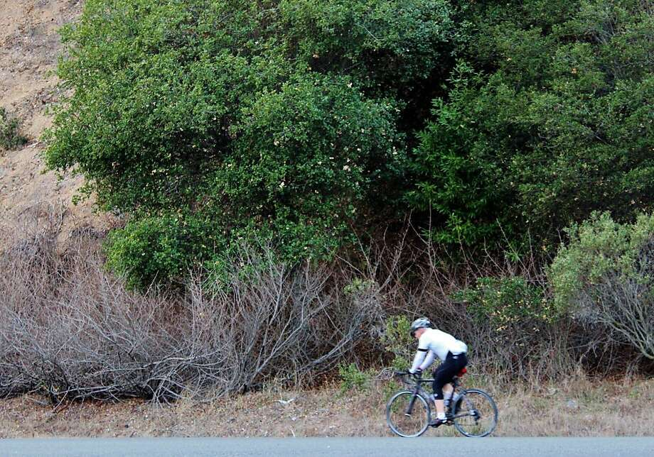 San Pablo Reservoir Recreation Area Photo: Stephanie Wright Hession, Special To The Chronicle