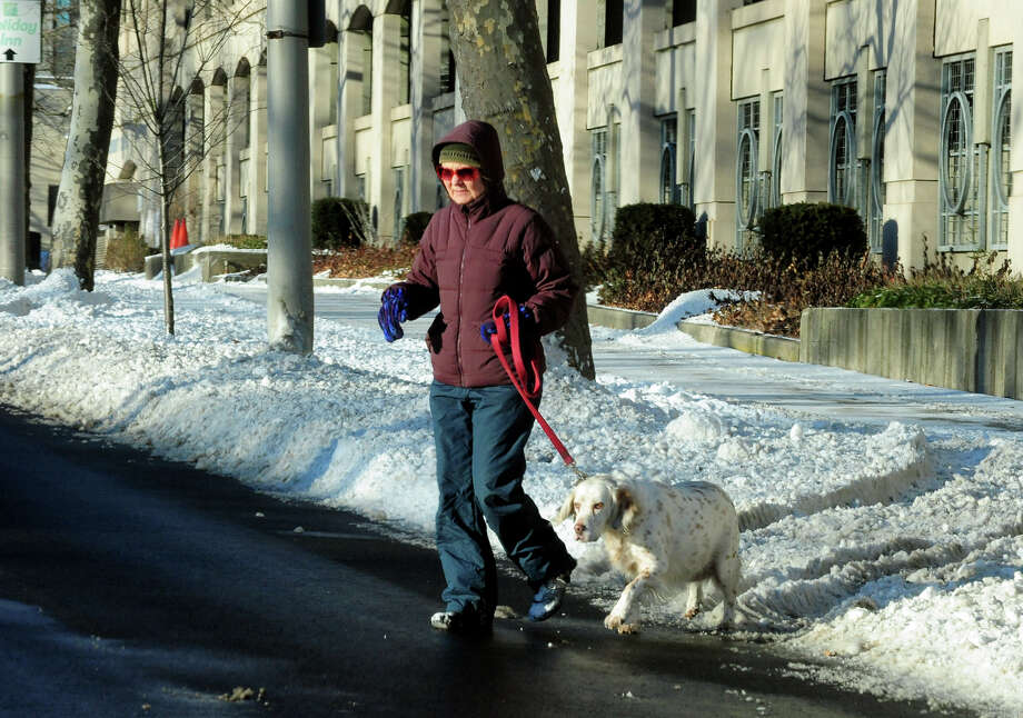 A woman crosses Lafayette Street as she walks her dog in Bridgeport, Conn. on Friday January 3, 2014. Photo: Christian Abraham / Connecticut Post