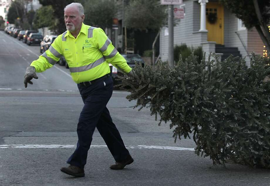 Mike Julian gathers discarded Christmas trees in the Sea Cliff neighborhood of San Francisco, Calif. on Friday, Jan. 3, 2014. Julian works for Recology, which collects Christmas trees from residents, then shreds and recycles the remains. Photo: Paul Chinn, The Chronicle