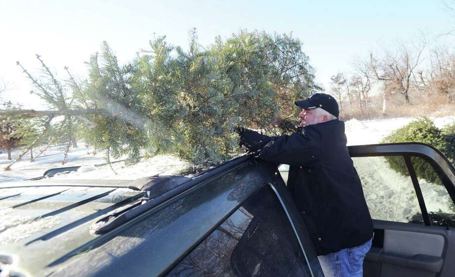 Bill Wheaton of Riverside unloads his Christmas tree from the top of his vehicle before placing it in the recycling pile at Greenwich Point, Saturday morning, Jan. 4, 2014. According to the Town of Greenwich website, undecorated trees can be dropped off at four sites, Byram Park, Bruce Park (children's parking lot), Greenwich Point and the Holly Hill Resource Recovery Facility. Disposal times are 8 a.m. to 4 p.m., all week, except for Holly Hill, which is 7 a.m. to 3 p.m. Monday - Friday and Saturday from 7 a.m. to noon. The deadline for returning trees is Jan. 31st except for Holly Hill which takes trees for recycling year round. The wood chips can be used by residents as mulch or compost. Tree chips retained by the Town will be used in parks as mulch for trails in woodlands, shrub beds and soil stabilization. Photo: Bob Luckey / Greenwich Time