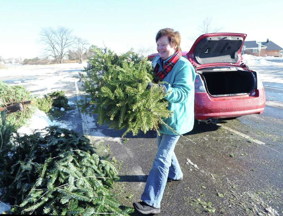 "Nancy Warfield of Cos Cob places her ""Charlie Brown Christmas tree"" in the recycling pile at Greenwich Point, Saturday morning, Jan. 4, 2014. According to the Town of Greenwich website, undecorated trees can be dropped off at four sites, Byram Park, Bruce Park (children's parking lot), Greenwich Point and the Holly Hill Resource Recovery Facility. Disposal times are 8 a.m. to 4 p.m. all week, except for Holly Hill, which is 7 a.m. to 3 p.m. Monday - Friday and Saturday from 7 a.m. to noon. The deadline for returning trees is Jan. 31st except for Holly Hill which takes trees for recycling year round. The wood chips can be used by residents as mulch or compost. Tree chips retained by the Town will be used in parks as mulch for trails in woodlands, shrub beds and soil stabilization. Photo: Bob Luckey / Greenwich Time"