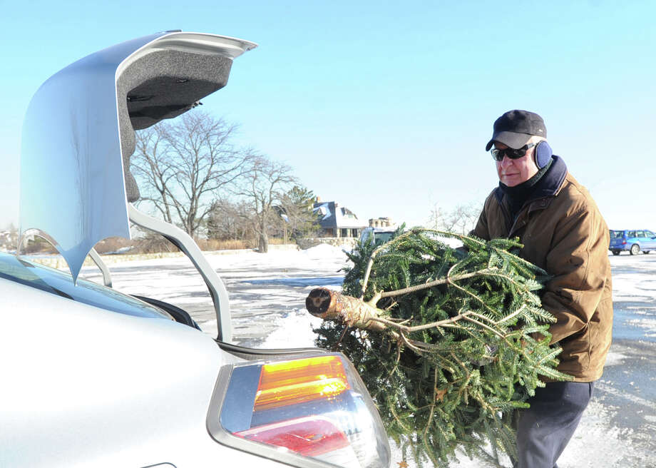 Al Amato of Old Greenwich unloads his Christmas tree from the trunk of his car before placing it in the recycling pile at Greenwich Point, Saturday morning, Jan. 4, 2014. According to the Town of Greenwich website, undecorated trees can be dropped off at four sites, Byram Park, Bruce Park (children's parking lot), Greenwich Point and the Holly Hill Resource Recovery Facility. Disposal times are 8 a.m. to 4 p.m. all week, except for Holly Hill, which is 7 a.m. to 3 p.m. Monday - Friday and Saturday from 7 a.m. to noon. The deadline for returning trees is Jan. 31st except for Holly Hill which takes trees for recycling year round. The wood chips can be used by residents as mulch or compost. Tree chips retained by the Town will be used in parks as mulch for trails in woodlands, shrub beds and soil stabilization. Photo: Bob Luckey / Greenwich Time