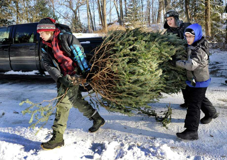 Boy Scouts from Troop 5 in Brookfield, Conn. pick up Christmas trees to recycle from area homes Saturday as part of a fourth annual fundraising effort. The money collected helps toward Scouting activites throughout the year. Among the scouts who participating are from left, Eli Jordan, 14, Ryan Murphy, 13, and Michael Pondiccio, 15. They'll do this again next Saturday, January 11. Any resident wishing to have his tree picked up can email a request to tree@brookfieldtroop5.org or call 203-770-3423. Photo: Carol Kaliff / The News-Times