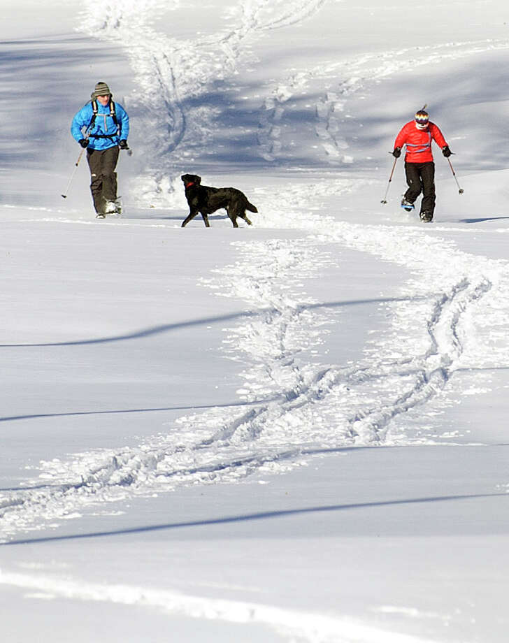 Courtney and Brendan Morrell snowshoe at E. Gaynor Brennan Golf Course as their dog, Kyzer, runs alongside on Saturday, January 5, 2014 Photo: Lindsay Perry / Stamford Advocate