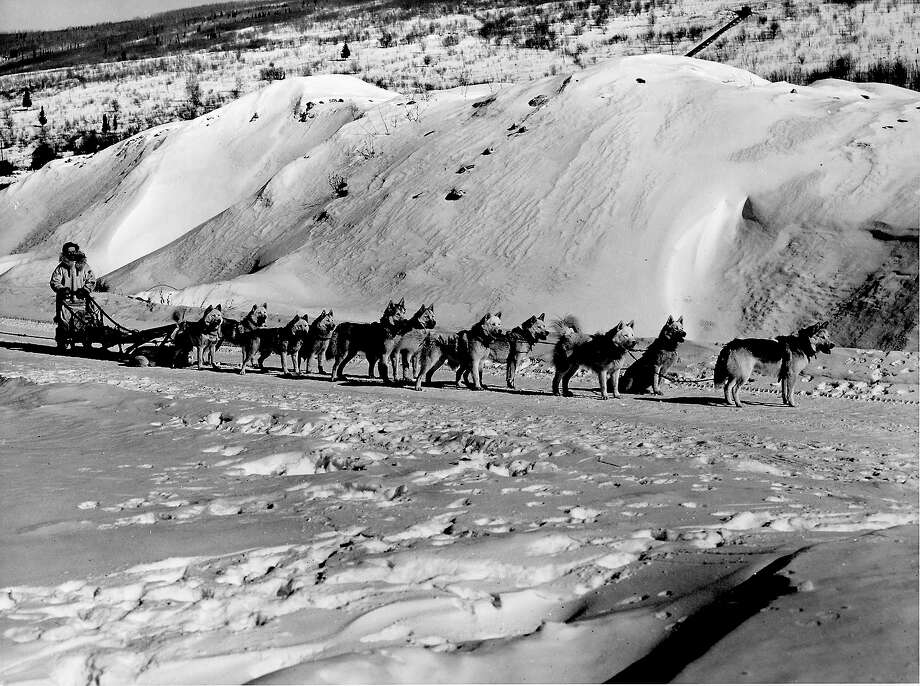 Sled dog racing — demonstration sport in 1932This event was also held only once, in 1932 at Lake Placid. Only the US and Canada competed. Photo: Herbert Gehr, Time & Life Pictures/Getty Image / Herbert Gehr