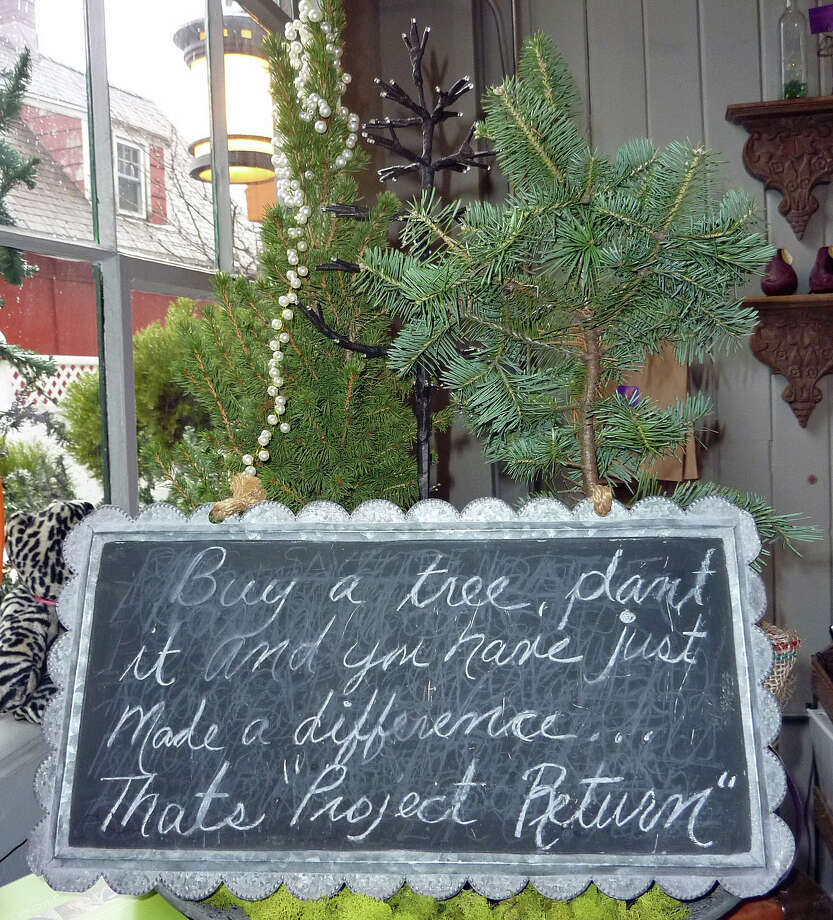 Lion's Paw & Co., a small shop on Donnelly Walk, has been selling trees to benefit Project Return, an organization helping teenage girls. Photo: Genevieve Reilly / Fairfield Citizen