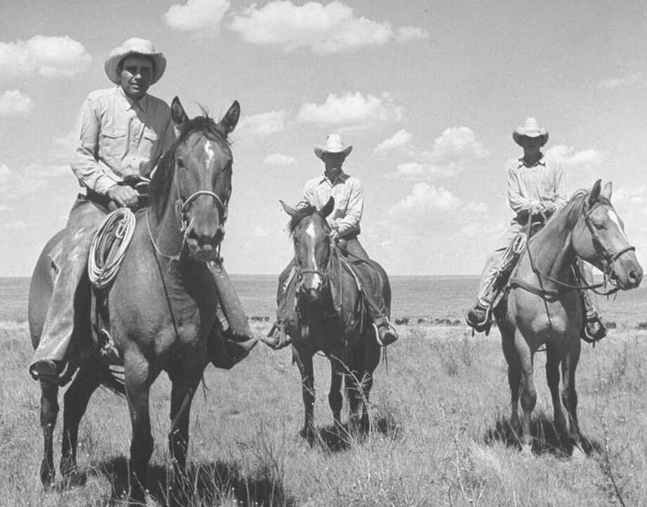 Three men are pictured on horseback with cattle behind them.  (Photo by Alfred Eisenstaedt/Pix Inc./Time Life Pictures/Getty Images) Photo: Alfred Eisenstaedt, Time & Life Pictures/Getty Image / Time Life Pictures