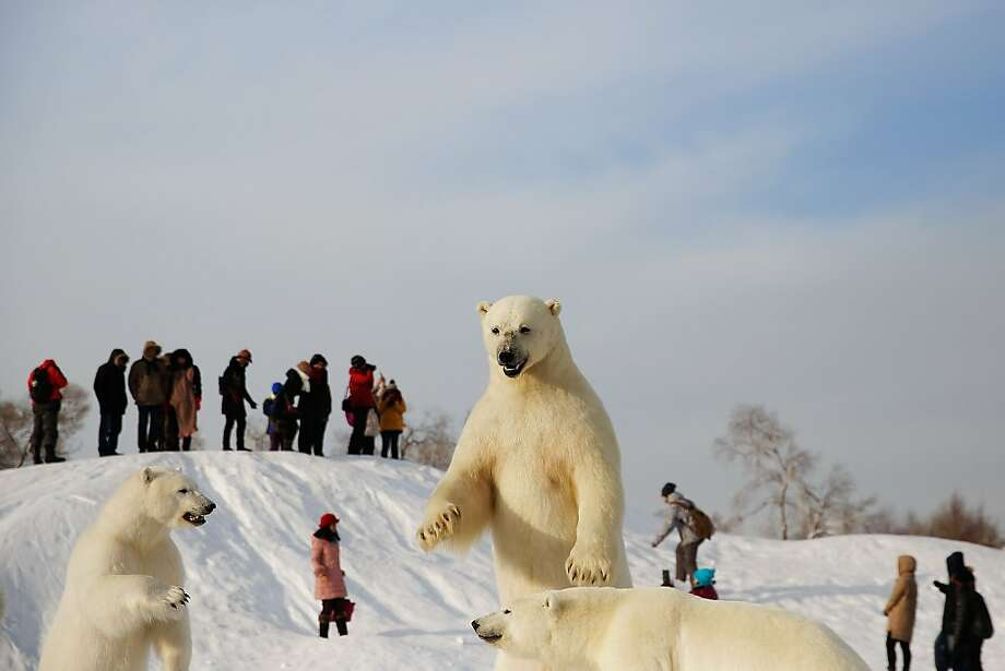Fauna and games: The sledding is terrific at the Harbin International Snow Sculpture Art Expo in Harbin, China. Just be careful to avoid the polar bears. (Expo officials get upset when you knock them over.) Photo: Lintao Zhang, Getty Images