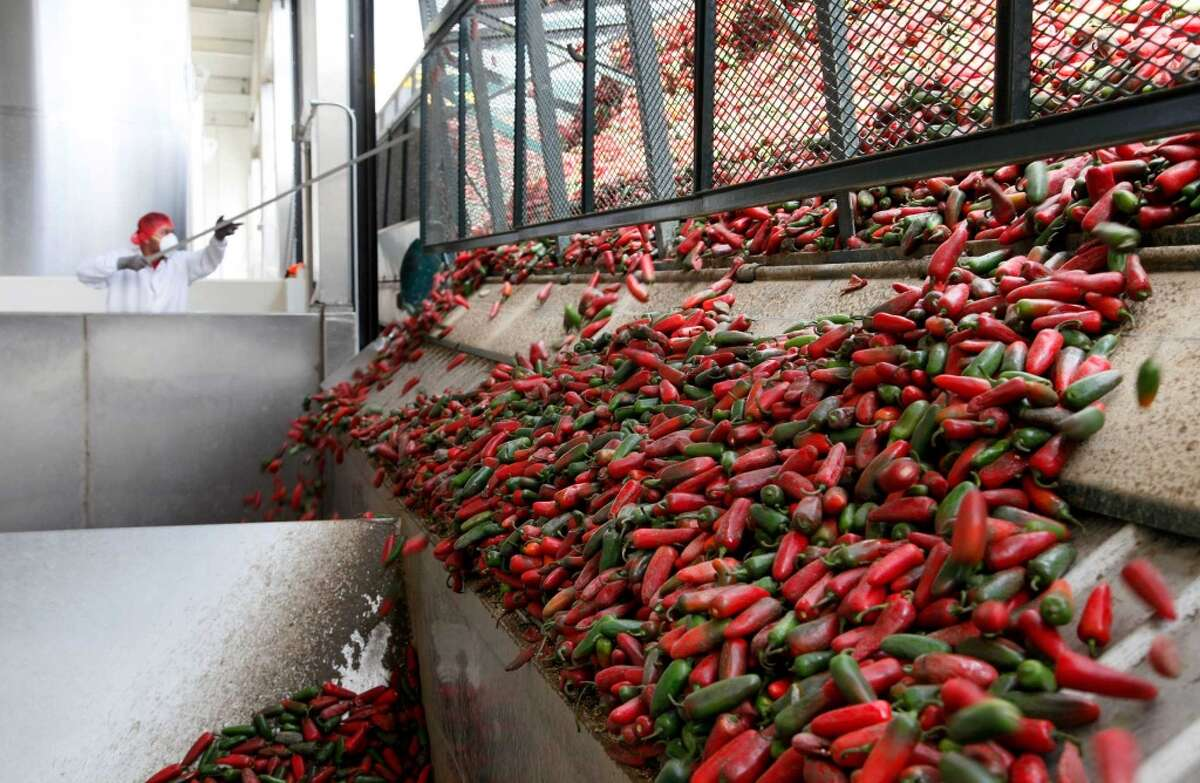 This Tuesday Oct. 29, 2013 photo a worker unloads chili peppers for making of Sriracha chili sauce at the Huy Fong Foods factory in Irwindale, Calif. The maker of Sriracha hot sauce is under fire for allegedly fouling the air around its Southern California production site. The city of Irwindale filed a lawsuit in Los Angeles Superior Court on Monday Oct. 28, 2013 asking a judge to stop production at the Huy Fong Foods factory, claiming the chili odor emanating from the facility is a public nuisance. (AP Photo/Nick Ut)