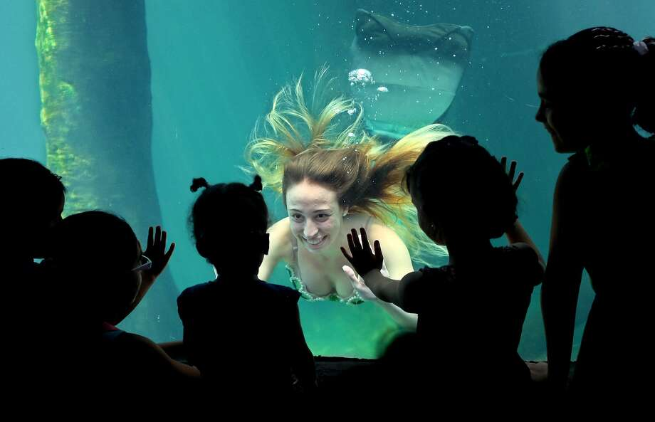 Scale model:A mermaid greets children at the city aquarium in Sao Paulo, Brazil. Photo: Andre Penner, Associated Press