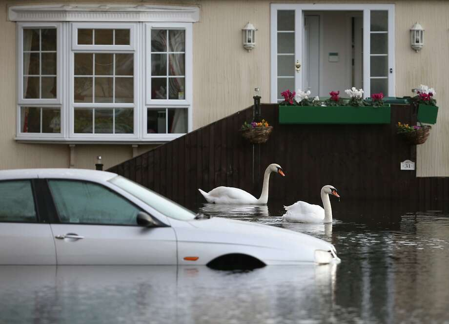 Honk!Swans swim by a submerged vehicle during the latest flooding of the River Thames in Chersey, England. Parts of the United Kingdom are entering a third 