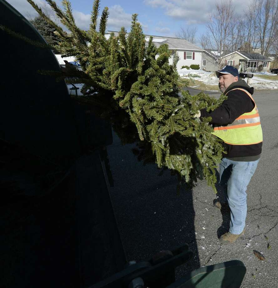 Tony Carroll of the Colonie Highway Department removes Christmas trees from the side of the road Thursday afternoon, Jan. 9, 2014, on Haypath  in Colonie, N.Y.  (Skip Dickstein / Times Union) Photo: Skip Dickstein / 00025304A