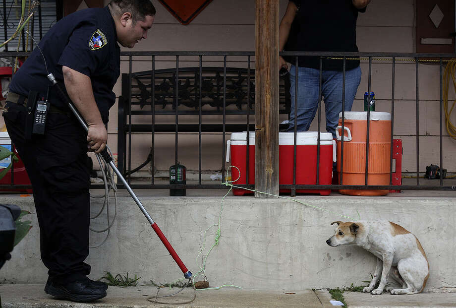 Animal Care Services officer Joe Cortez approaches Joe, a stray restrained by a resident. The fearful street dog fought back, refusing food and comfort. Photo: Lisa Krantz, San Antonio Express-News / San Antonio Express-News
