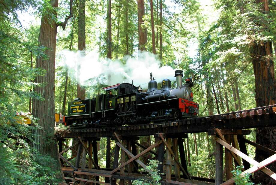 Roaring Camp Railroads is offering a series of Rain Forest Weekends, taking passengers on a steam train through virgin redwoods on narrow-gauge tracks once used to haul massive logs out of the Santa Cruz Mountains. Series runs through March 30, 2014. Photo: Roaring Camp