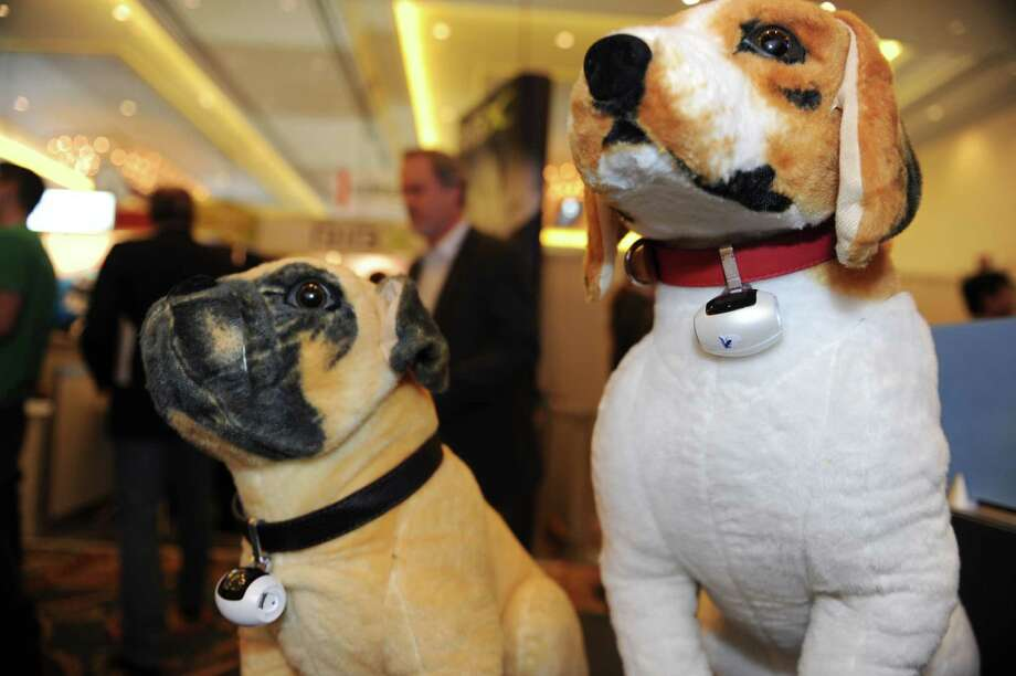 Stuffed dogs wear the PawsCam camera for pets, at the 2014 International CES. The waterproof, two megapixel camera hangs on the dog's neck and is auto activated to shoot photos based on an algorithm which lets the camera know when interesting action is happening. The photos are automatically uploaded to the Cloud so the pet owner can see what their pet is doing when the owner is not home. Photo: ROBYN BECK, Getty Images / AFP
