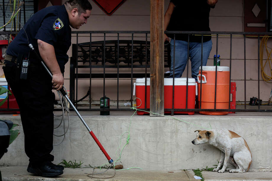 Animal Care Services officer Joe Cortez approaches a stray dog who was tied up by a resident in San Antonio on October 30, 2013. Photo: Lisa Krantz, San Antonio Express-News / San Antonio Express-News