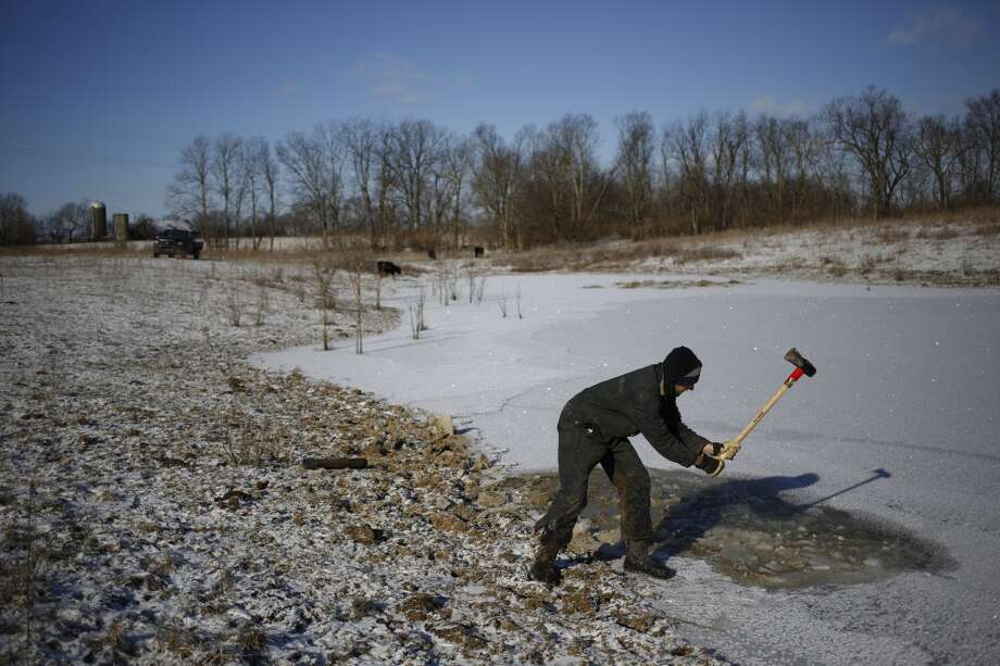 Kentucky: Organic farmer Will Muir of Wholesome Living Farm breaks through the ice on a pond so his cows can access drinking water in the midst of bitter cold below-zero temperatures on January 7, 2014 in Winchester, Kentucky. Photo: Luke Sharrett, Getty Images