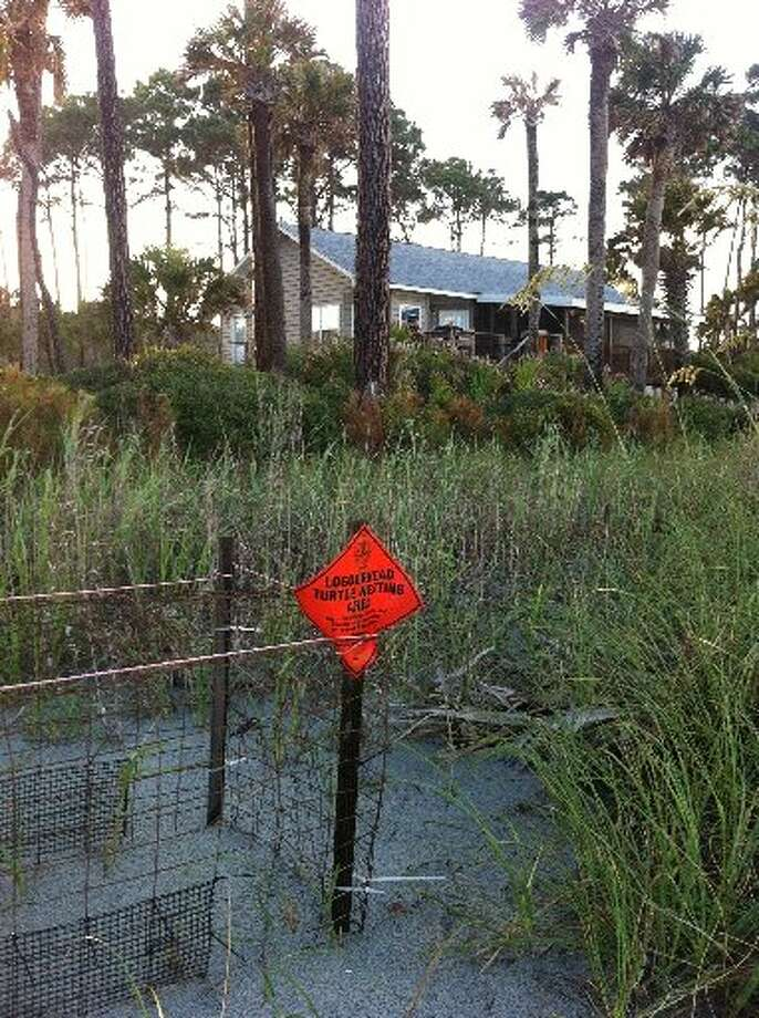 Signs mark a protected loggerhead turtle nesting area near our rented beach house. Photo: Terry Scott Bertling, San Antonio Express-News